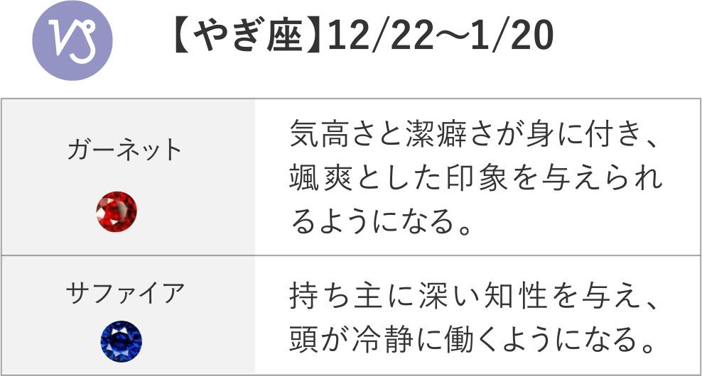 【やぎ座】12/22~1/20 ガーネット サファイア